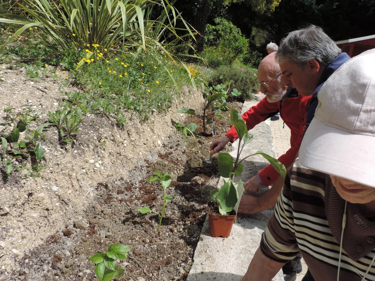 Atelier Jardinage - mai 2019